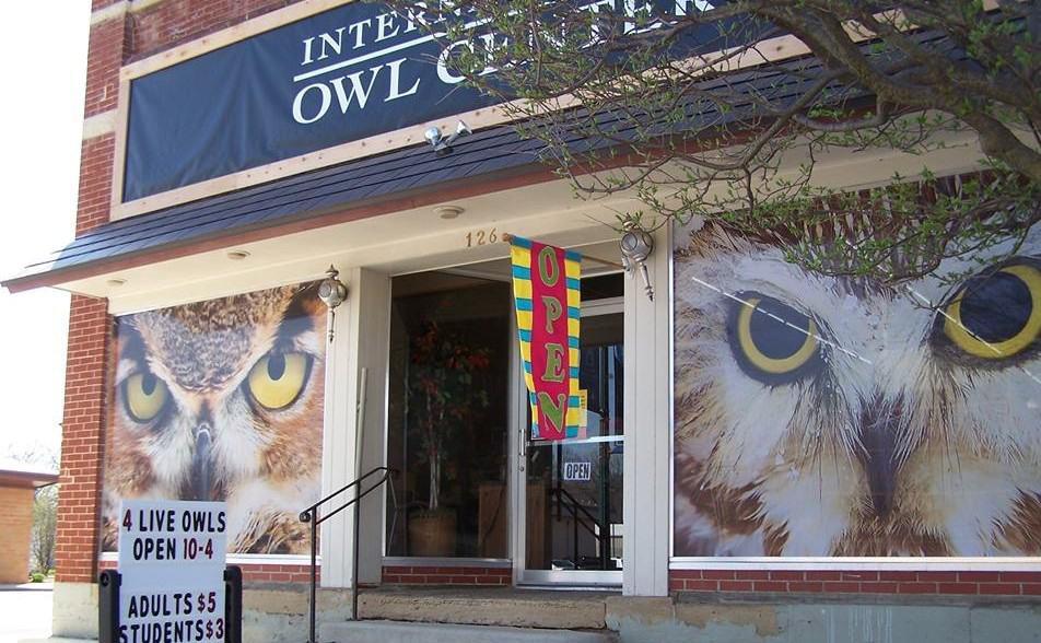 owl center windows